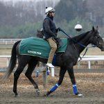 期待のディープインパクト牝馬・アルジャンテが雲雀S2着に。