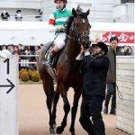サンデーサイレンスの血が入っていないレイデオロがダービー制覇!種牡馬としての活躍も楽しみ。
